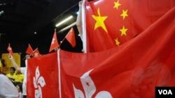 激進親建制派團體經常帶同中國國旗及香港特區區旗出席論壇,學者認為他們的表現無助建制派的整體形象