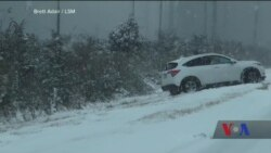 Жахливі наслідки потужного арктичного циклону на східному узбережжі США, Канади і Мексики. Відео