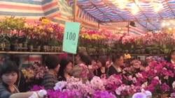 亞洲各地民眾喜迎蛇年新春