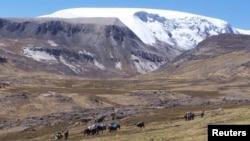 Severni deo ledene ploče Kelkaja u Perru