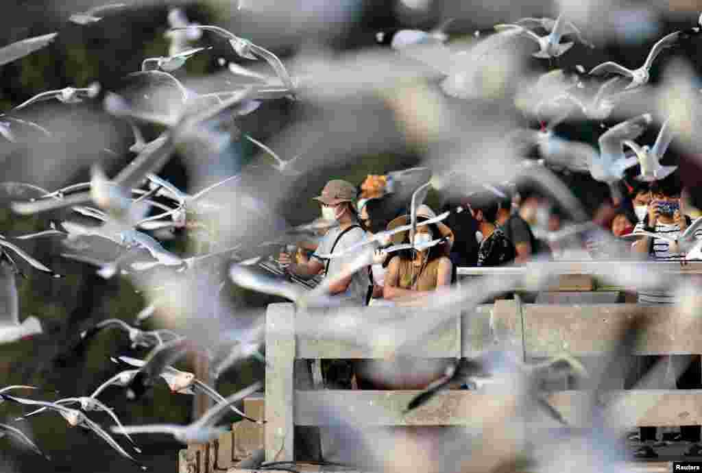 People watch seagulls at Bang Pu seaside resort in Samut Prakan province on the outskirts of Bangkok, Thailand.