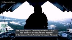 U.S. Committed to NATO Alliance