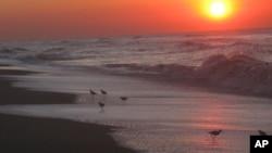 سمندر اورطلوعِ آفتاب