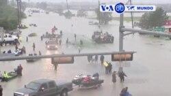 Manchetes Mundo 30 Agosto 2017: Harvey a caminho da Louisiana