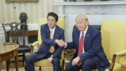 Trump and Abe Shake Hands in Oval Office