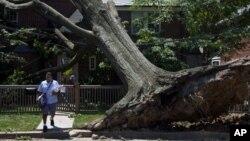 Oboreno stablo ispred kuće u Vašingtonu