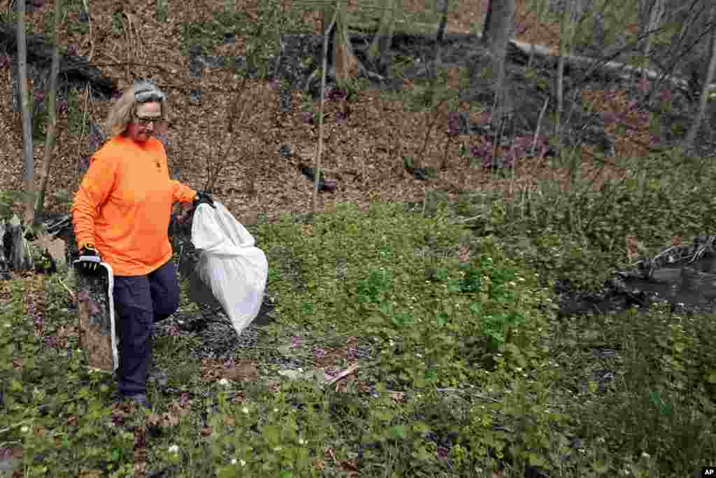 """Donna Stolz, a member of the board of directors of the Rachel Carson Trails Conservancy, picks up trash from the roadside along a portion of the trail named for the ecologist author of """"Silent Spring"""" on Earth Day in Springdale, Pa., where Carson was born, April 22, 2017."""