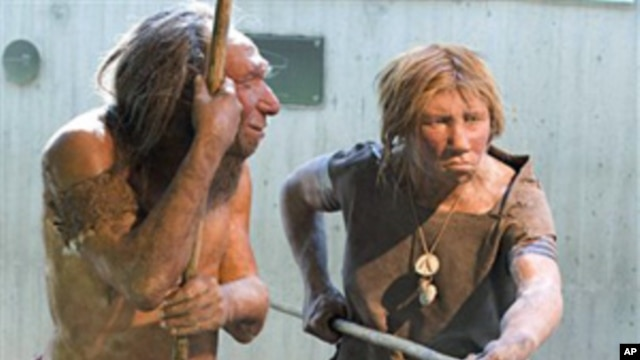 A museum recreation of Neanderthals (undated photo)