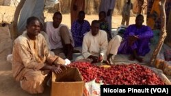 Des réfugiés d'Assaga-Nigeria montrent leur production de poivrons rouges, le 28 février 2016. Le commerce en avait été interdit pendant des mois car les autorités estimaient que cela finançait Boko Haram. (VOA/Nicolas Pinault)