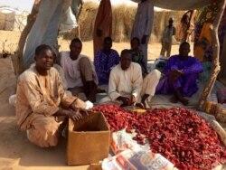 Reportage sur le commerce du poivron à Diffa de Nicolas Pinault
