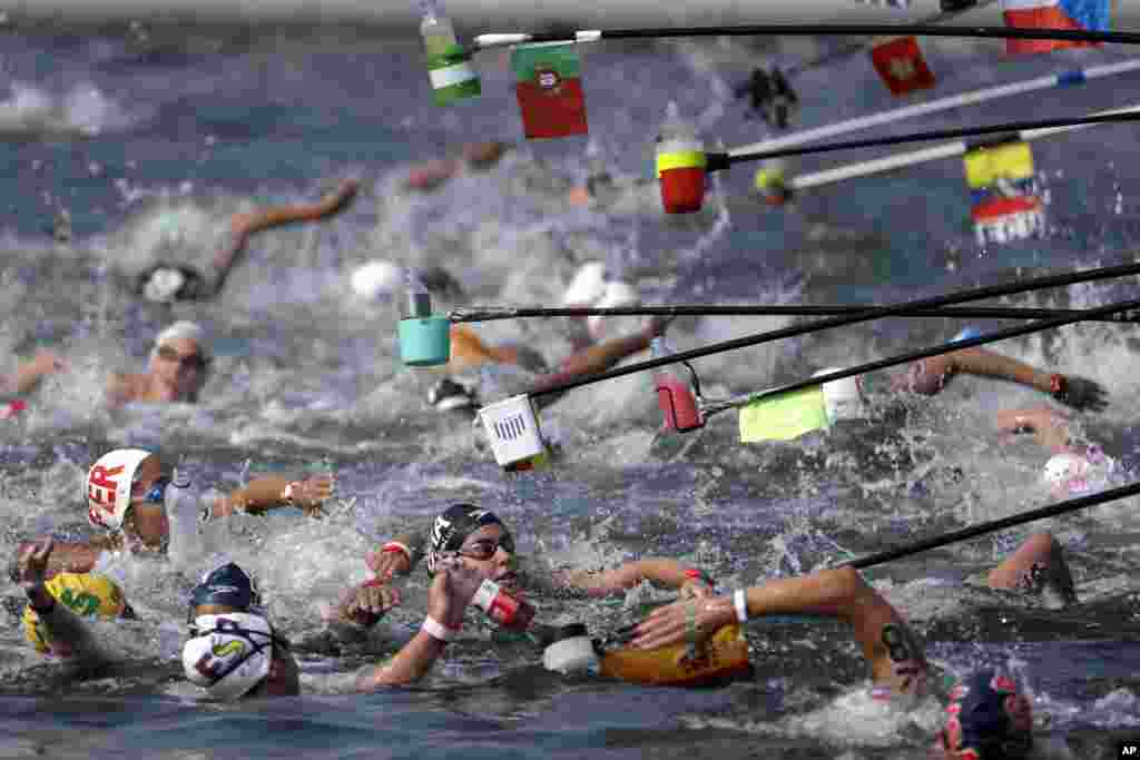 Swimmers reach for drink bottles while competing in the women's 10km open water swim at the World Swimming Championships in Yeosu, South Korea.
