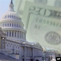 وفاقی حکومت کا رول محدود ہونا چاہیے:ٹی پارٹی