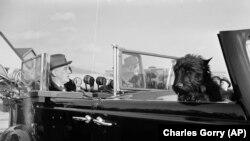Собака Рузвельта Фала, Вашингтон, 12 лютого 1944 року