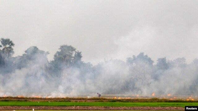 A farmer burns a paddy field to clear the land for a new crop in Thailand's Nakhonsawan province, north of Bangkok July 21, 2013.