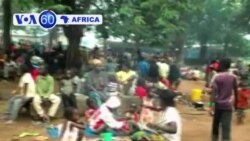 Manchetes Africanas 26 Novembro 2013