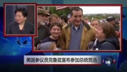 小夏看美国:美国参议员克鲁兹宣布参加2016总统大选