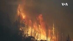 California Fires ...