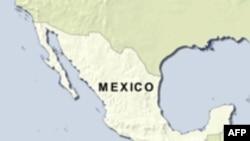 Doanh gia Mexico thiệt mạng trong tai nạn máy bay trực thăng
