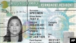 Sample American visa