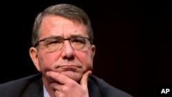 Menteri Pertahanan AS, Ashton Carter memberi kesaksian di hadapan sidang dengar pendapat komite Senat AS (foto: dok).