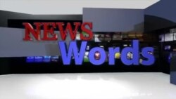 News Words: Insurgency