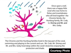 A page from one of marine biologist Danielle Dixson's children's books.