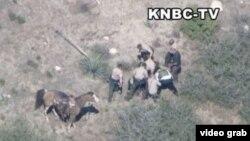 Oficiales rodean y golpean a un fugitivo en las montañas de San Bernardino. El video fue captado por el canal de noticias KNBC-TV.