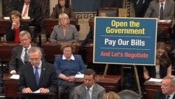 国会特别小组将研究预算蓝图