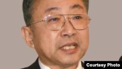 居港人士陈愉林说许多大陆人来香港参加示威 By 陈愉林