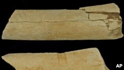 The two stone tool modified bones from Dikika, Ethiopia