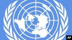ONU: Brasil deve provar merecer lugar permanente no Conselho de Segurança