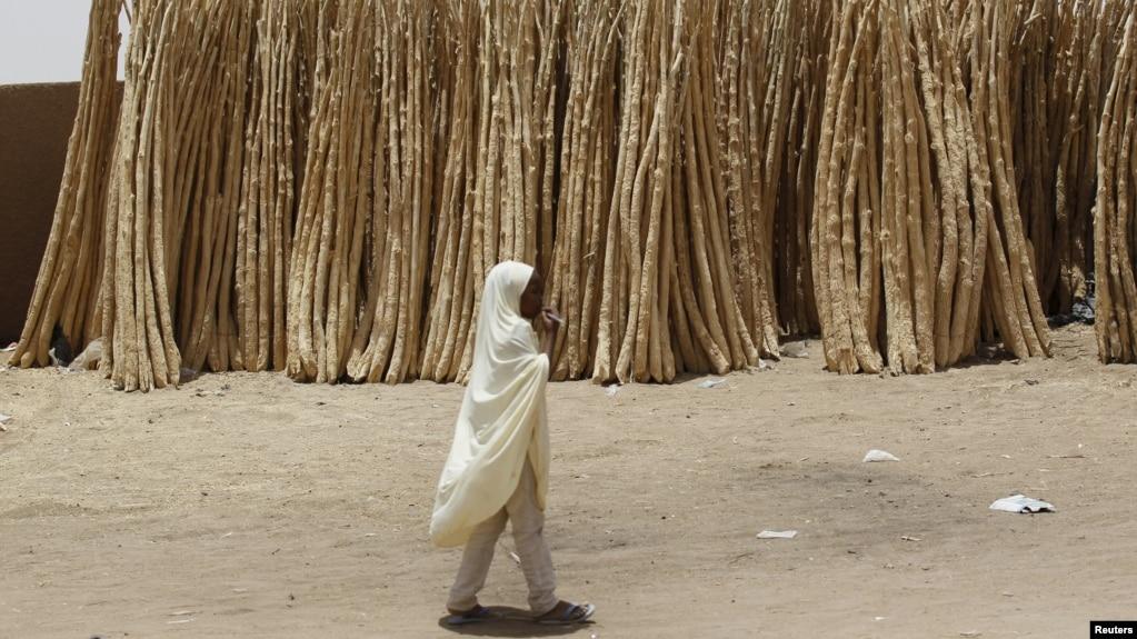 Une jeune fille marche dans le desert près de la ville d'Agadez, Niger, le 25 mai 2015.