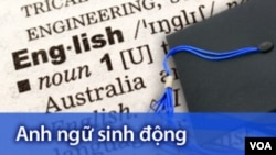 Dynamic English Program Graphic