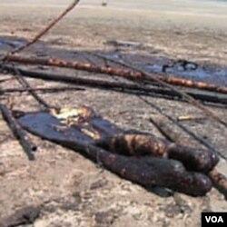 Dok ne budu očišćene, plaže na obalama Louisiane će biti prazne