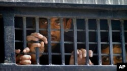 FILE - Detainees peer out from a prison van after their court appearance in Islamabad, Pakistan, Sept. 13, 2014.