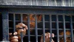 Moçambicanos presos no Lesoto querem ser transferidos para o seu país