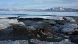 冰层减少更适航行 俄罗斯加强控制北极航道