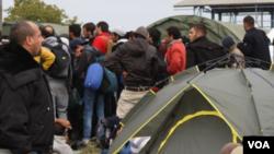 Para migran di Serbia (Foto: dok.)