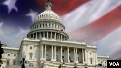 US Congress; Ginin Majalisar Dokokin Amurka