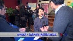 台湾官员:台美关系以实质性交流为主