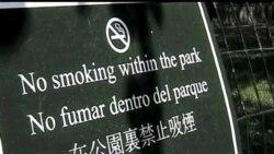 纽约市的全球减烟计划