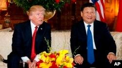 Дональд Трамп и Си Цзиньпин