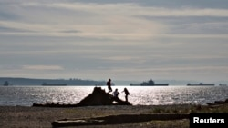 Children climb on a large piece of driftwood along the beach of Ambleside Park in West Vancouver, British Columbia, March 25, 2013. A man walking his dog on a Vancouver beach discovered a sneaker-clad foot Wednesday, the 13th severed extremity to wash ashore in British Columbia since 2007.
