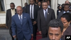 Мирные переговоры по Судану прошли в Эфиопии