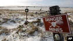 A mine field from the 1982 Falklands War between Britain and Argentina is seen near Stanley, Falkland Islands, June 10, 2012.