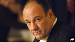 Mafya babası Tony Soprano rolü ile üne kavuşan James Galdolfini