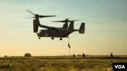 ამერიკული V-22 Osprey უკრაინაში, სამხედრო წვრთნებზე პირველად გამოჩნდა