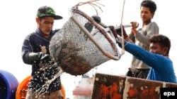 緬甸漁民。