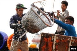 FILE - Migrant fishermen from Myanmar unload fish at a jetty in Samut Sakhon province, Thailand, March 11, 2016.