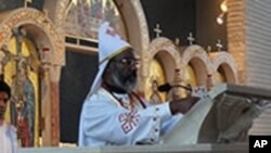 Fr.Athenasisus Celebrates Divine Liturgy